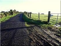 H5572 : Muddy along Gap Road by Kenneth  Allen