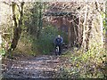 NZ2657 : Cyclist on the Bowes Railway Path at Birtley by Oliver Dixon