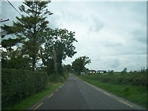 N0430 : View west along the R444 at Clonfanlough Hill by Eric Jones