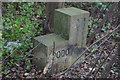 TA1133 : Millennium Stone, Sutton on Hull by Ian S