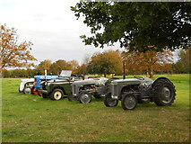 TF1505 : Collection of vintage tractors at Manor Farm, Glinton by Paul Bryan
