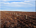 SE0668 : Boundary Fence on Combes Hill (North) by Chris Heaton