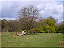 TQ2173 : In Richmond Park by Robin Webster
