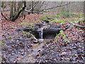TL7806 : Winter Stream by Roger Jones