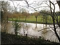 SP2965 : River Avon by Emscote Gardens, Warwick 2014, January 10, 10:46 by Robin Stott