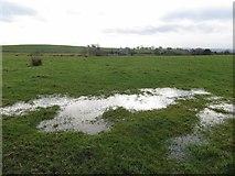 SD7513 : Standing water in an Affetside field by Philip Platt