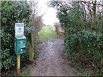 SD7513 : Footpath from the Millennium Green by Philip Platt