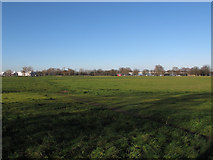 TQ4277 : Woolwich Common, reinstated by Stephen Craven