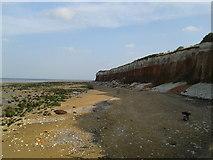 TF6741 : Hunstanton cliffs by Rob Purvis