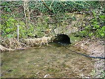 ST9898 : Infant River Thames flows through a small stone culvert under the A433 Cirencester to Tetbury road by Paul Best