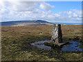 SN8819 : Summit area of Fan Gyhirych by Trevor Littlewood