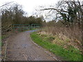 SP1685 : Path and footbridge in the park by Richard Law