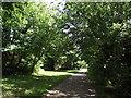 TL0452 : John Bunyan Trail by Tim Glover