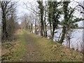 N4156 : Lakeside Path by kevin higgins