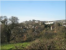 SX9473 : Red roofs of Cliffden Close from Eastcliff Park, Teignmouth by Robin Stott