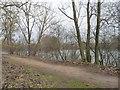 SK8052 : Path on the west side of Balderton Lake by Christine Johnstone