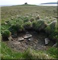 HY6134 : Kelp pit, Hacks Ness, Sanday, Orkney by Claire Pegrum