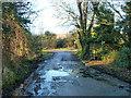 SU9883 : Damp spot on Hockley Lane by Robin Webster