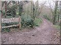 TQ2907 : Withdean Stadium Woods by Peter Holmes
