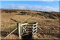 NW9856 : Southern Upland Way near Portavaddie by Billy McCrorie