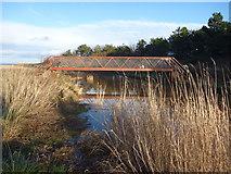NT6578 : Coastal East Lothian : Dogs On The Biel Water Footbridge by Richard West