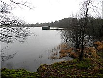 H5776 : Loughmacrory Lough by Kenneth  Allen