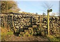 SE0063 : Stile on Dales Way by Derek Harper