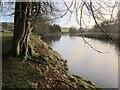 SE0262 : River Wharfe by Derek Harper