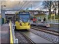 SD8500 : Queens Road Tram Stop by David Dixon