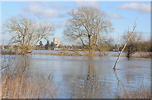 SO8832 : Flood Severn at Lower Lode by Philip Halling