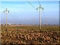 NZ5022 : Electricity transmission lines, RSPB Saltholme by Oliver Dixon