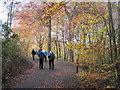 "SD8602 : Climbing ""Cardiac Hill"", Boggart Hole Clough by Tricia Neal"