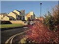 SX8572 : Houses at Orleigh Cross by Derek Harper
