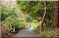 J3977 : Path, Redburn, Holywood (1) by Albert Bridge