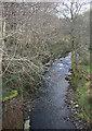 SS9188 : The Afon Garw/River Garw at Tylagwyn by eswales