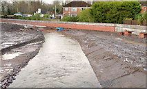 J3773 : The diverted Knock River, Orangefield Park, Belfast (1) by Albert Bridge