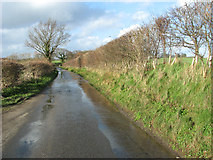 TM3687 : Approaching Low Road on Mill Lane by Evelyn Simak