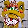 SJ8398 : Kung Hei Fat Choy by David Dixon