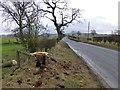 NU0102 : Felled rotten oak by Russel Wills
