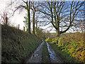SN1343 : Lane to Plas Lawrence, Monington by Dylan Moore