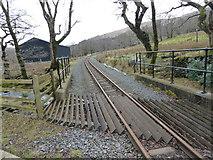 SH5848 : The Welsh Highland Railway near Cwm Cloch Isaf by David Medcalf