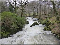 SH5848 : The Afon Colwyn in spate by David Medcalf