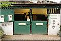SE2516 : Pit ponies by Richard Croft