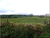 H3182 : Cavandarragh Townland by Kenneth  Allen