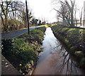 ST3084 : Reen alongside Lighthouse Road, Newport by Jaggery