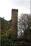 TQ3286 : Castle Climbing Centre by N Chadwick
