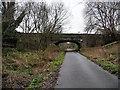 NT2575 : Warriston Gardens bridge, Goldenacre Path by Christine Johnstone