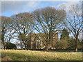 TA0249 : Watton Abbey by Jonathan Thacker
