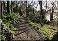 SX8754 : Path, Greenway by Derek Harper