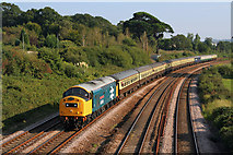 SX8769 : Railway Line at Aller Vale by Wayland Smith